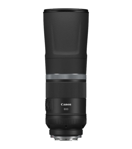 Canon RF 800mm/F11 IS STM